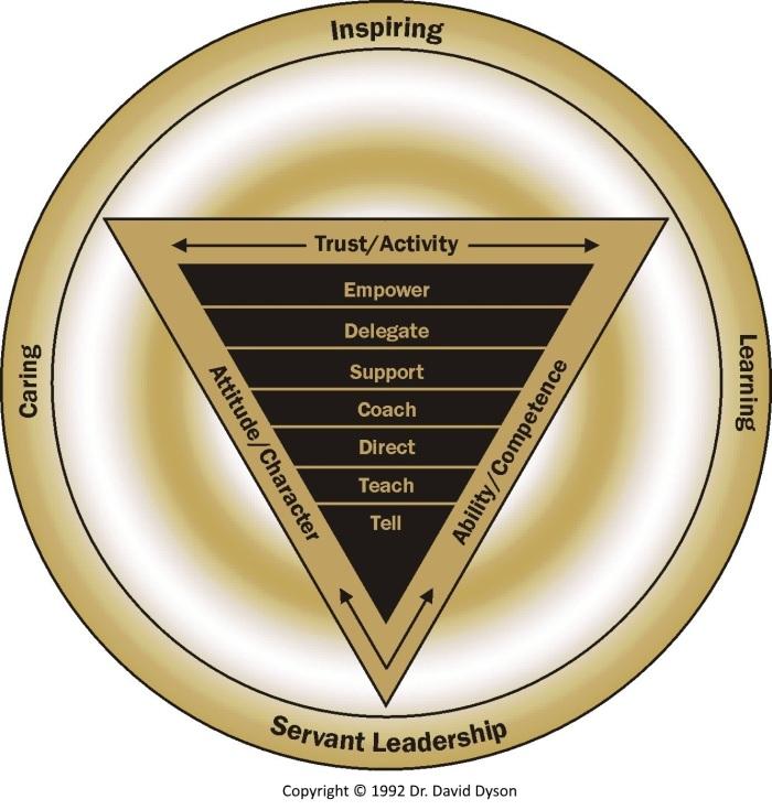 Dyson Empowerment Model Gold 1992